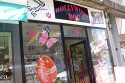 HOLLYWOOD DOG - Animaux Vire